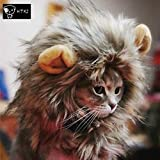 HTKJ Lion Mane Dog Cat Costume Cute Pet Wig Hat for Cat or Small Dog Dress up Halloween Christmas (Multi)