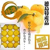 【爽やかな香気】徳島県産 ゆず 秀品 9?14玉 1kg箱
