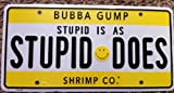 Stupid Is As Stupid Does Novelty License Plate