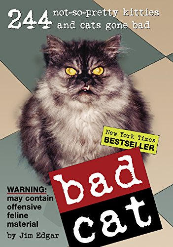 bad-cat-244-not-so-pretty-kitties-and-cats-gone-bad