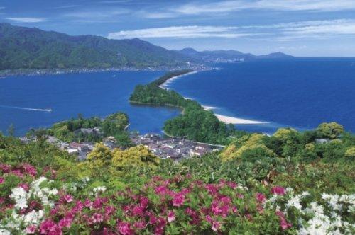 2016ピース ジグソーパズル パズルの超達人(日本風景) 天橋立-京都 ベリースモールピース(50x75cm)