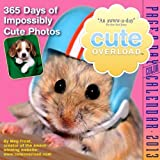 Cute Overload 2012 Page-a-Day Calendar