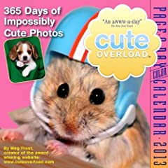 Cal 2012 Cute Overload (Page a Day Calendar)