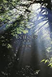 ECHOES ?木霊?