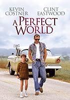 A Perfect World