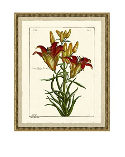 Art Source Rustic Botanical Print I, Multi
