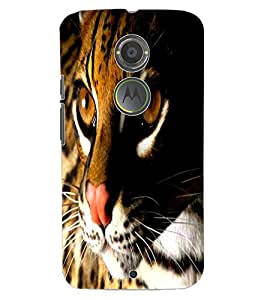 ColourCraft Leopard Design Back Case Cover for MOTOROLA MOTO X2
