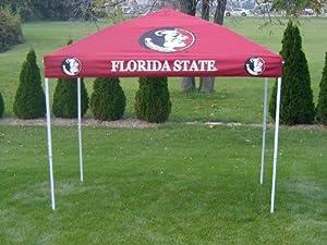 Florida State Seminoles 9