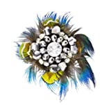 Shoellery Blue Peacock Feather Decorative Shoe, Hat or Brooch Clips