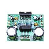 HiLetgo TDA7293 AC デジタル オーディオ アンプ基板アンプ モノラル 単一チャンネル 単一トラック HIFI 超大出力 100W 超幅電源 双12~32V [並行輸入品]