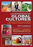 Understanding Global Cultures: Metaphorical Journeys Through 31 Nations, Clusters