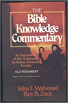 the bible exposition commentary pdf