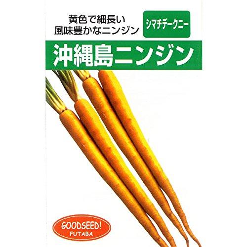 [島ニンジン 黄色で細長風味豊か 夏、秋まき 野菜タネ]琉球野菜:沖縄島人参の種3袋セット