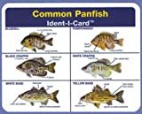 Common Panfish Ident-I-Card - Freshwater Fish Identification Card