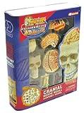 4Dパズル 頭蓋骨&脳