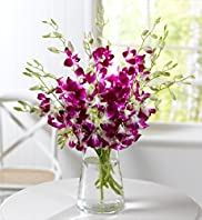 Dendrobium Orchid Bouquet