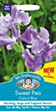 Mr. Fothergill's 23244 20 Count Oxford Blue Sweet Pea Seed