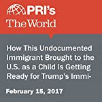 How This Undocumented Immigrant Brought to the U.S. as a Child Is Getting Ready for Trump's Immigration Agenda | Traci Tong,Angilee Shah