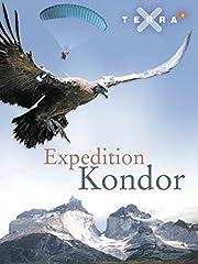 Film Expedition Kondor Stream