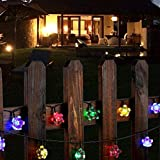 Outdoor Solar Fairy Lights Flower, Waterproof 50 Blossom LED String Lighting for Garden, Fence, Christmas, Tree, Home, Holiday, House, Yard, Wedding, Party Decoration - Multicoloured, 22FT, 8-in-1 Mode
