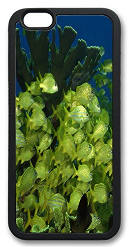 Fantastic Faye Pc Material Under Sea World Beautiful Hot Selling Top Quality Fishs Special Design Cell Phone Cases For Iphone 6 No.2