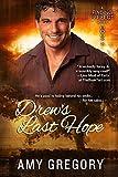 Drews Last Hope (Finding Perfect Book 4)