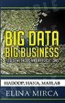 Big Data - Big Business: Tools, Metho...