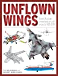 Unflown Wings: Soviet And Russian Unr...