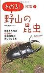 野山の昆虫 (わかる!図鑑)