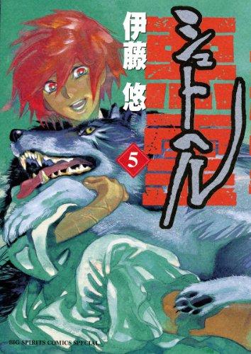 シュトヘル 5 (ビッグ コミックス〔スペシャル〕)