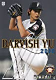 ダルビッシュ有 2010年 カレンダー