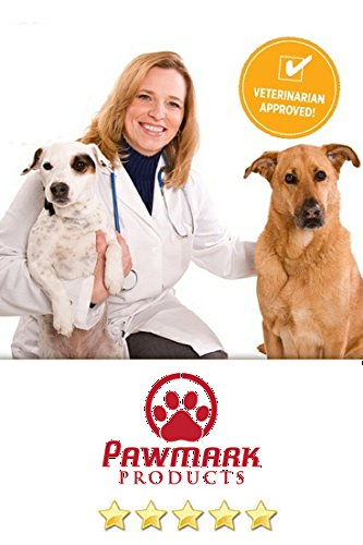 Is Glucosamine Safe For Small Dogs