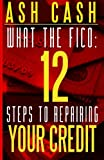 51g7zupMT6L. SL160  What the FICO: 12 Steps to Repairing Your Credit