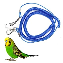 Random Color Parrot Bird Leash Kits Anti-bite Flying Training Rope for Agapornis fischeri
