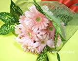 【ギフト・贈り物に】ガーベラ20本の花束・ブーケタイプFL-SE-07