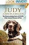 Judy: A Dog in a Million: From Runawa...