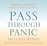 img - for Pass Through Panic: Freeing Yourself from Anxiety and Fear book / textbook / text book
