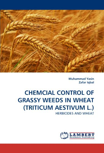 chemcial-control-of-grassy-weeds-in-wheat-triticum-aestivum-l-herbicides-and-wheat