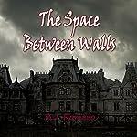 The Space Between Walls | R.J. Romero