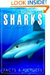 Shark Facts and Cool Pictures. Animal...