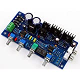 Generic YJ Dual AC12V-0-12V Class A NE5532 Senior Fever Sound Palette Board Pre-amplifier Board For HI-FI Amplifier