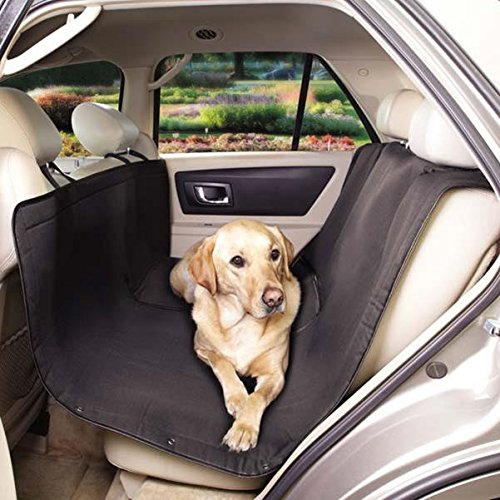 Pet Gear Car Seat front-390094