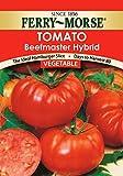 Ferry-Morse 1391 Tomato Seeds, Beefmaster Hybrid (70 Milligram Packet)