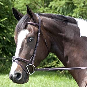 Exselle Elite High Raised Fancy Stitched Bridle, Oversize, Dark Havana