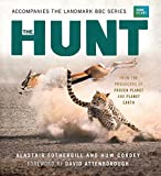img - for The Hunt: The Outcome Is Never Certain book / textbook / text book