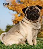 Pugs 2013 Hardcover Weekly Engagement