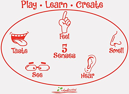 Silicone Sensory Development Activity Mat...Play, Learn, Create (Play Dough Mats compare prices)