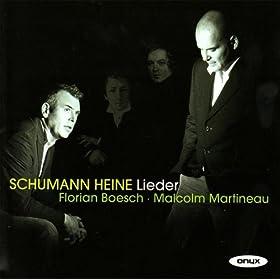 Liederkreis, Op. 24: VI. Warte, warte wilder Schiffmann