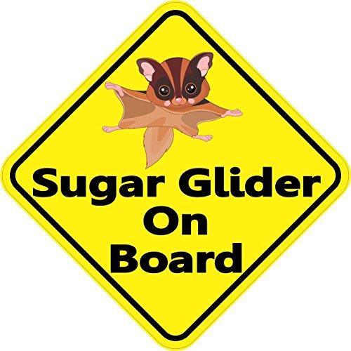 """4.5""""x4.5"""" Sugar Glider On Board Bumper Sticker Decal Window Vinyl Stickers Decals"""
