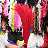 Maslin 50pcs 45-50CM/long Silver Pheasant Tail Feathers DIY Wedding Decorations Lady Amherst red Silver Chicken Feather Plume - (Color: red) (Color: red)